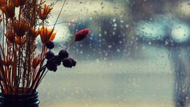 Pogoda na dzień: przelotny deszcz, do 11 stopni