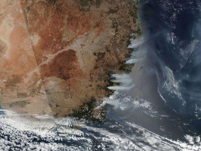 Pożary na wschodzie Australii widziane z kosmosu 5 grudnia (NASA Worldview)