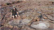 Nigel Clarke z wielkim śladem zauropoda (University of Queensland)